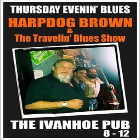 harpdog brown2 500×500